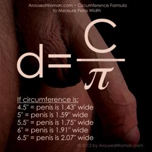 ArousedWoman.com - Man Uncut Penis Circumference Formula to Measure Penis Width