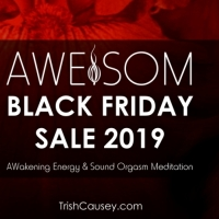 AWESOM BLACK FRIDAY SALE! Amazing Special with Payment Plan.